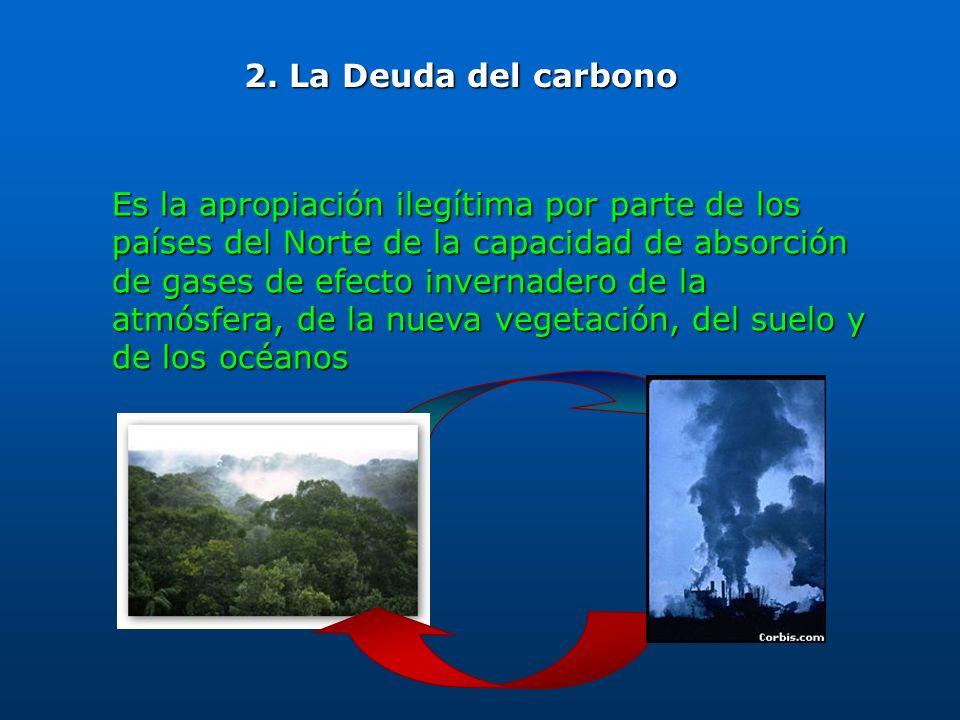 Es la apropiación ilegítima por parte de los países del Norte de la capacidad de absorción de gases de efecto invernadero de la atmósfera, de la nueva