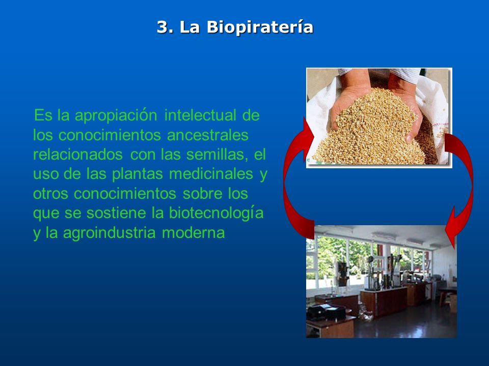 Es la apropiaci ó n intelectual de los conocimientos ancestrales relacionados con las semillas, el uso de las plantas medicinales y otros conocimiento