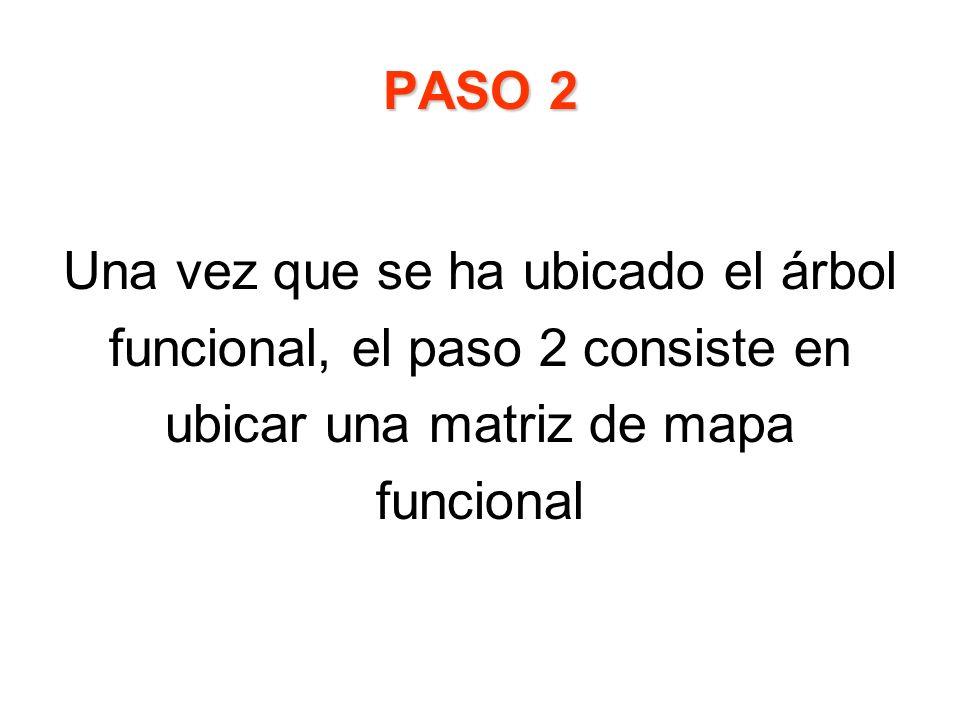 PASO 2 Una vez que se ha ubicado el árbol funcional, el paso 2 consiste en ubicar una matriz de mapa funcional