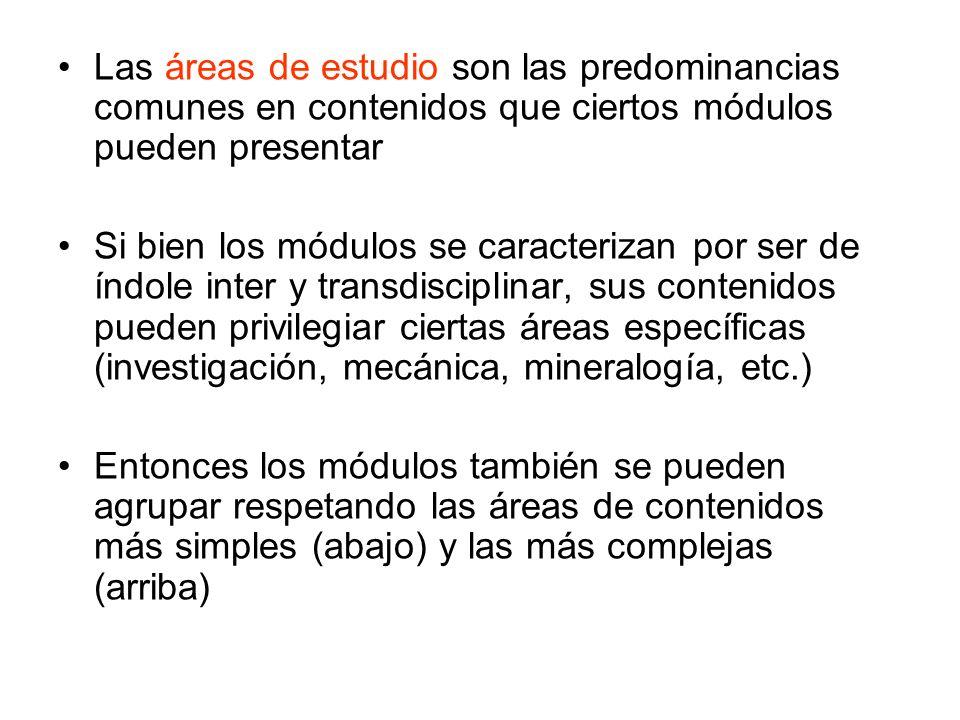 Las áreas de estudio son las predominancias comunes en contenidos que ciertos módulos pueden presentar Si bien los módulos se caracterizan por ser de