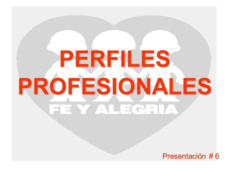 PERFILES PROFESIONALES Presentación # 6