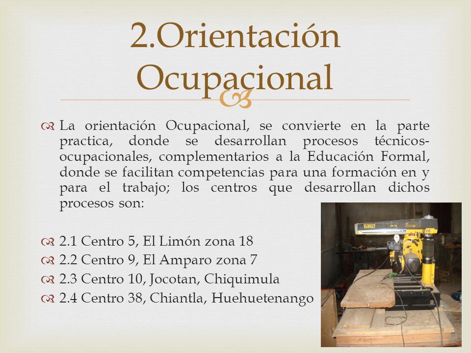 La orientación Ocupacional, se convierte en la parte practica, donde se desarrollan procesos técnicos- ocupacionales, complementarios a la Educación F