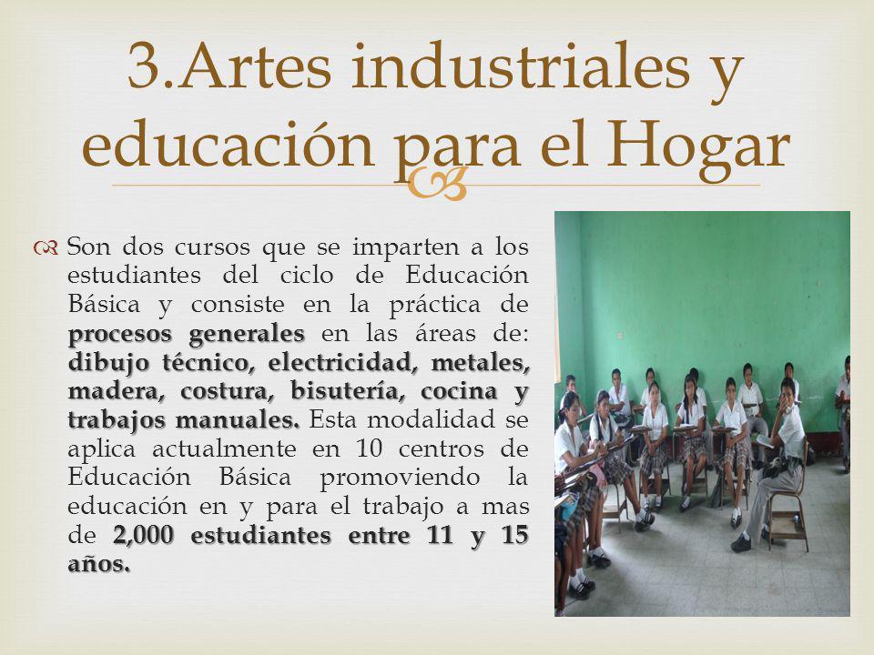 procesos generales dibujo técnico, electricidad, metales, madera, costura, bisutería, cocina y trabajos manuales. 2,000 estudiantes entre 11 y 15 años