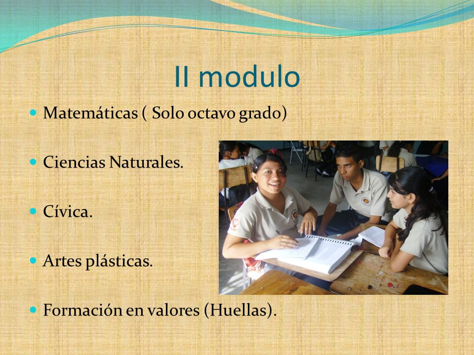 Matemáticas ( Solo octavo grado) Ciencias Naturales. Cívica. Artes plásticas. Formación en valores (Huellas). II modulo