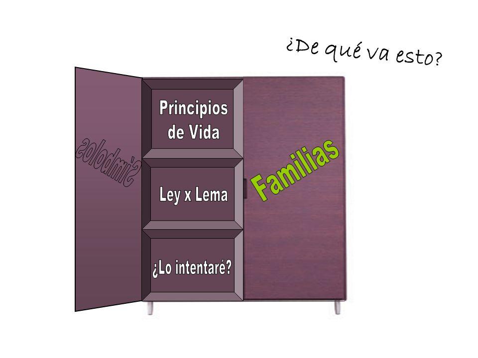 FAMILIA JUNIORS COLABORACIÓN