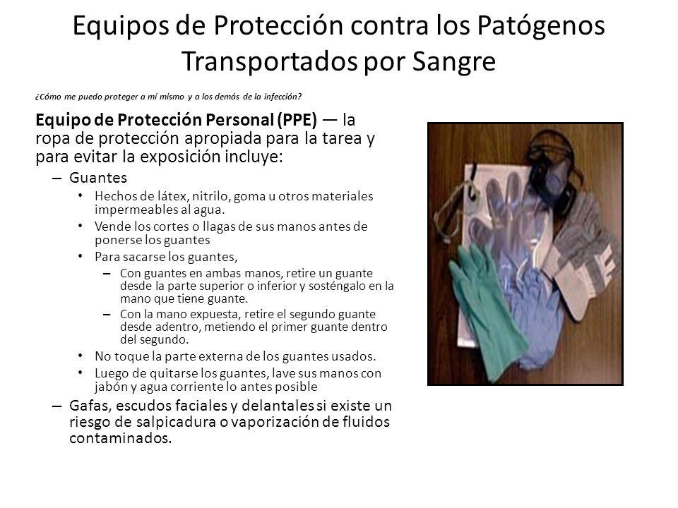 Equipos de Protección contra los Patógenos Transportados por Sangre ¿Cómo me puedo proteger a mí mismo y a los demás de la infección? Equipo de Protec