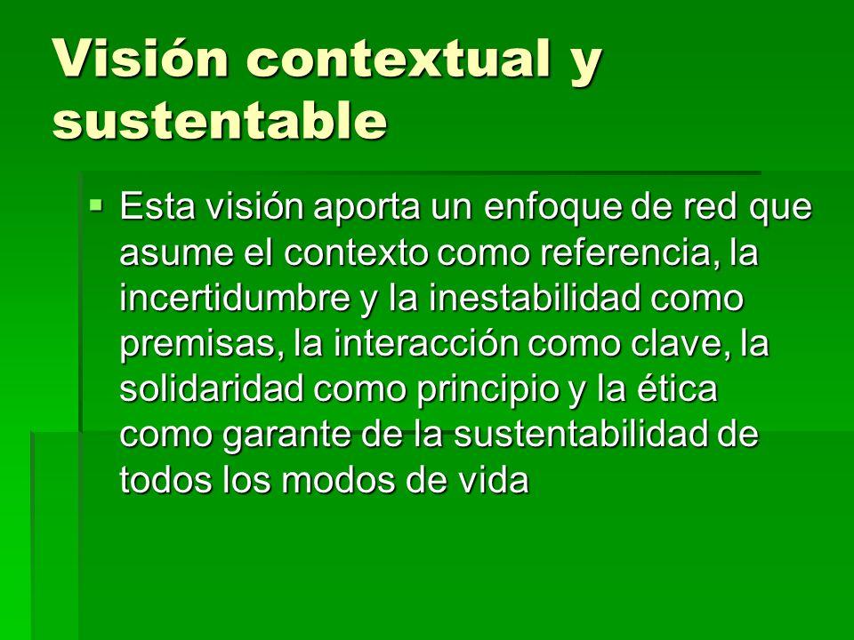 Visión contextual y sustentable Esta visión aporta un enfoque de red que asume el contexto como referencia, la incertidumbre y la inestabilidad como p