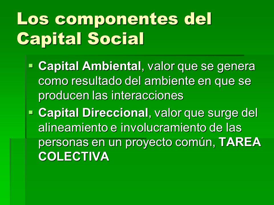 Los componentes del Capital Social Capital Ambiental, valor que se genera como resultado del ambiente en que se producen las interacciones Capital Amb