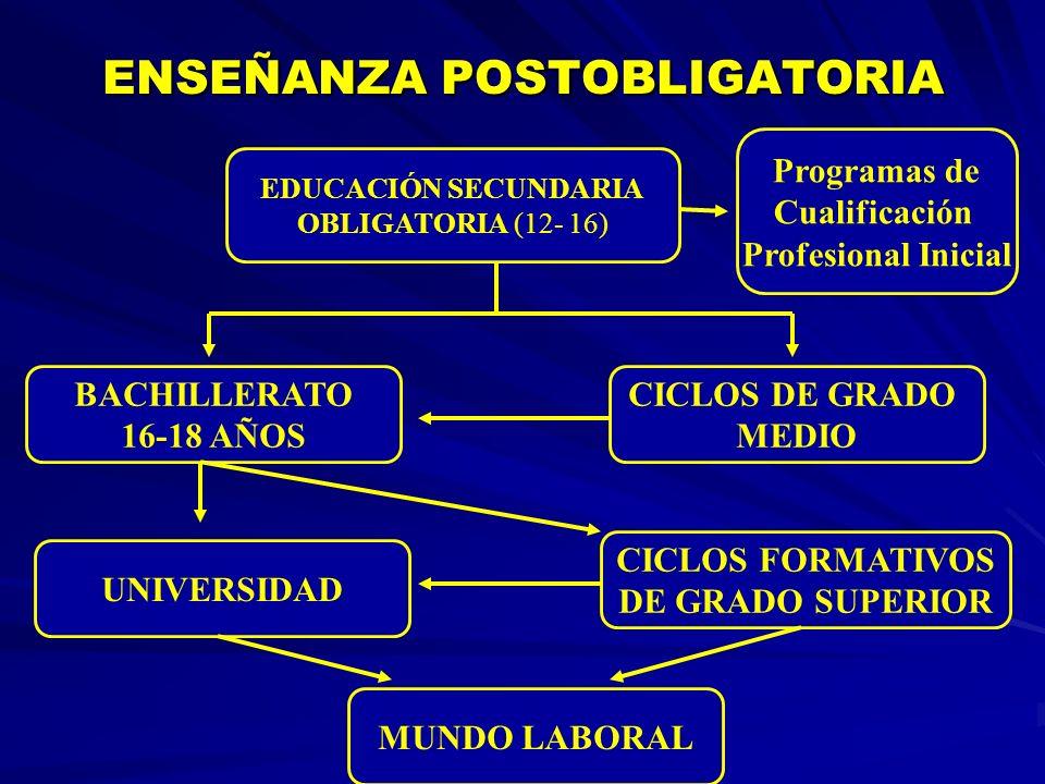 ENSEÑANZA POSTOBLIGATORIA ENSEÑANZA POSTOBLIGATORIA EDUCACIÓN SECUNDARIA OBLIGATORIA (12- 16) Programas de Cualificación Profesional Inicial CICLOS DE