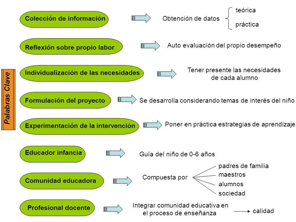 Colección de información Obtención de datos teórica práctica Reflexión sobre propio labor Auto evaluación del propio desempeño Individualización de la