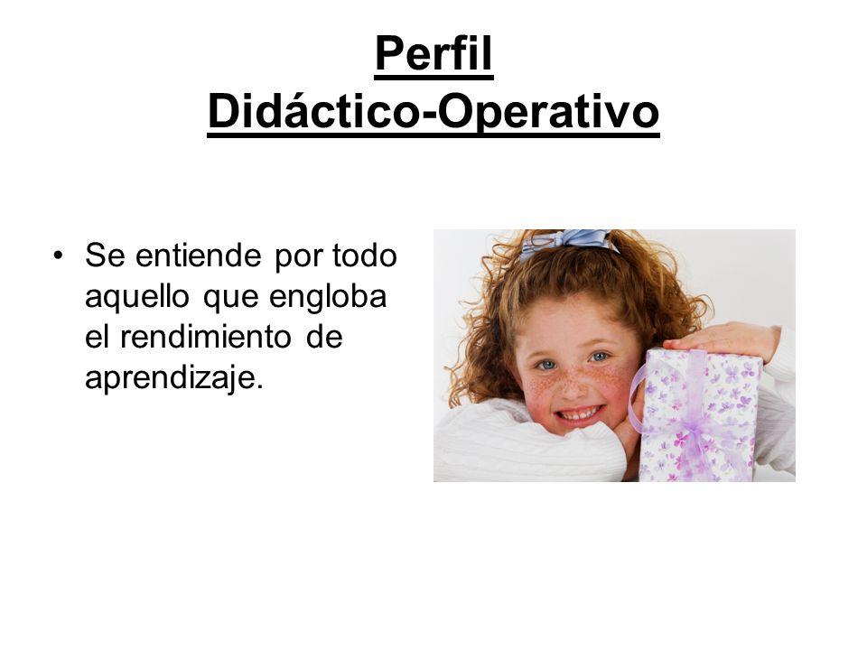 Perfil Didáctico-Operativo Se entiende por todo aquello que engloba el rendimiento de aprendizaje.