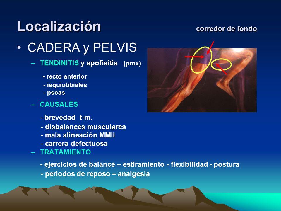 Localización corredor de fondo CADERA y PELVIS –TENDINITIS y apofisitis (prox) - recto anterior - isquiotibiales - psoas –CAUSALES - brevedad t-m. - d