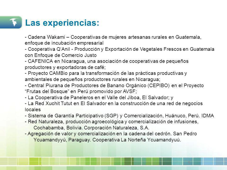 6 - Cadena Wakami – Cooperativas de mujeres artesanas rurales en Guatemala, enfoque de incubación empresarial - Cooperativa QAnil - Producción y Expor