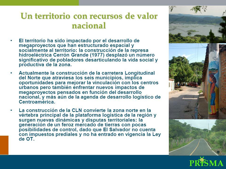 Comité Interinstitucional del Humedal Cerrón Grande: formado las ONG FUNDALEMPA, ASECHA, Alcaldías, MARN, CEL, ANDA, CACH y ADESCO´s.