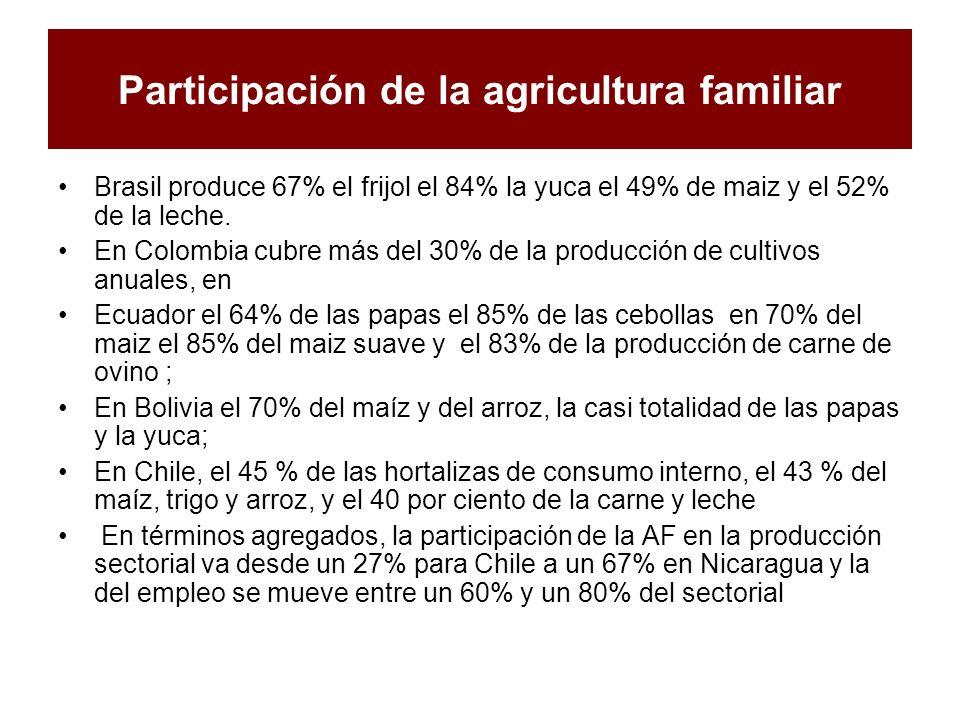Participación de la agricultura familiar Brasil produce 67% el frijol el 84% la yuca el 49% de maiz y el 52% de la leche. En Colombia cubre más del 30