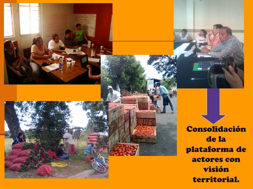 Consolidación de la plataforma de actores con visión territorial.