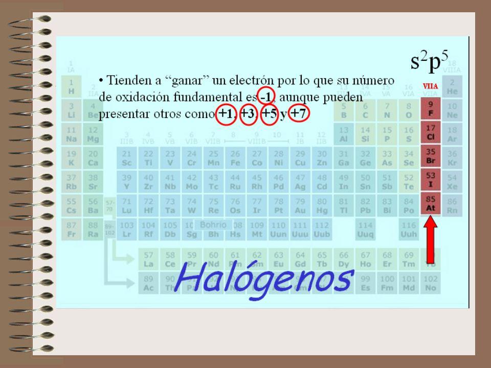 N-metil-2-butenamida N-etil-etanamida etanonitrilo metil-propilamina N,N-dietil-propanamida 2-metilpropilamina (isobutilamina) Ejercicio: Nombrar los siguientes derivados nitrogenados: CH 3 –CH=CH–CONH–CH 3 CH 3 –CONH–CH 2 –CH 3 CH 3 –C N CH 3 –CH 2 –CH 2 –NH–CH 3 CH 3 –CH 2 –CON–CH 2 –CH 3 | CH 2 –CH 3 CH 3 –CH–CH 2 –NH 2 | CH 3