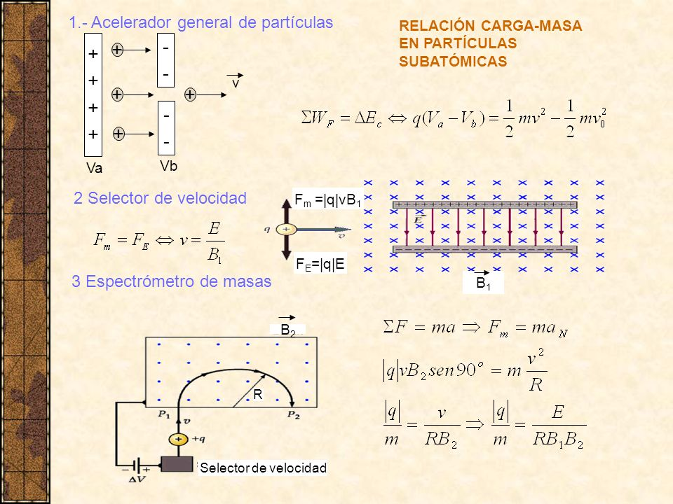 ++++++++ ---- ---- + + + 1.- Acelerador general de partículas Va Vb 2 Selector de velocidad 3 Espectrómetro de masas F m =|q|vB 1 F E =|q|E B1B1 B2B2