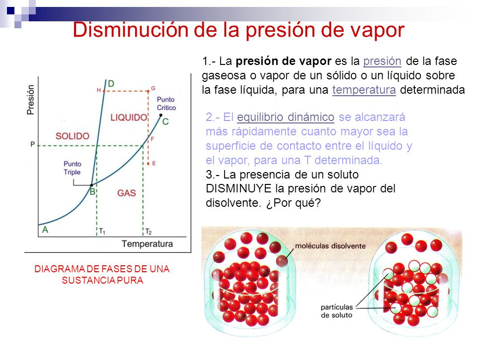 Disminución de la presión de vapor DIAGRAMA DE FASES DE UNA SUSTANCIA PURA 1.- La presión de vapor es la presión de la fase gaseosa o vapor de un sóli