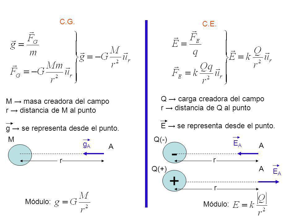 Actividad: Representa los vectores fuerza y los vectores intensidad de campo según corresponda (sobre el punto A y sobre la masa o la carga testigo): M A M A m + Q(+) A - Q(-) A + Q(+) A + q(+) + Q(+) q(-) - A - Q(-) + A q(+) - Q(-) - q(-) A - ++ A q1q1 q2q2 q3q3 q 1 = -q q 2 = +q q 3 = +2q