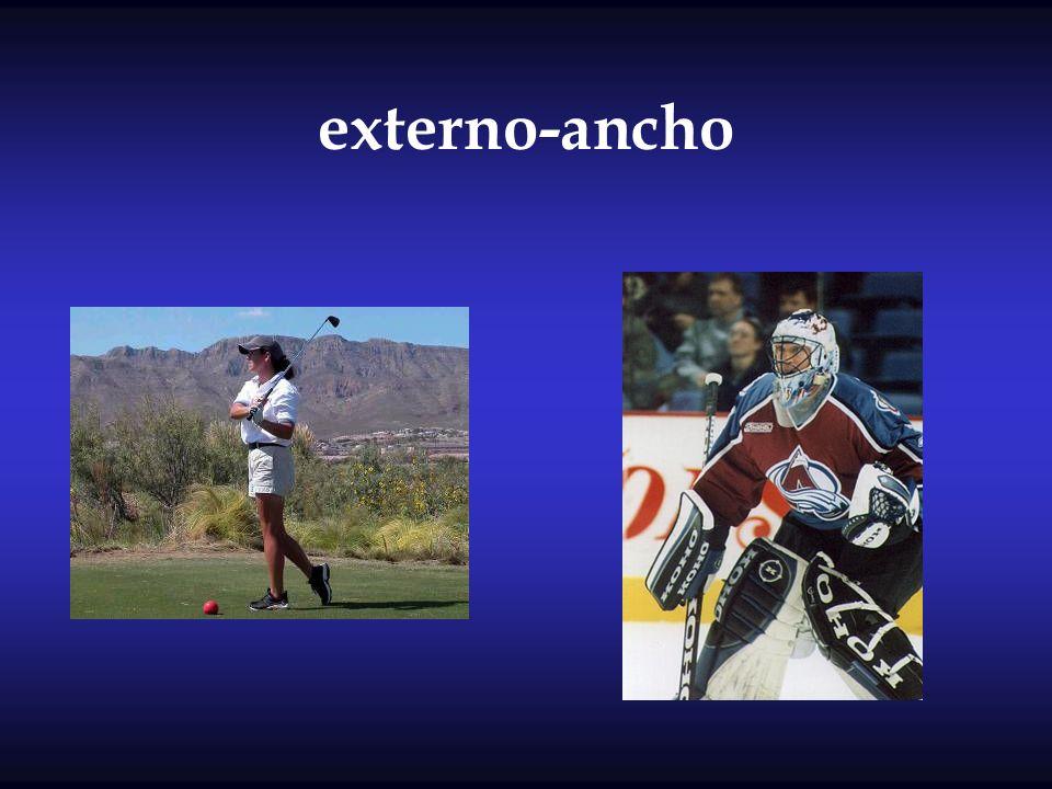externo-ancho