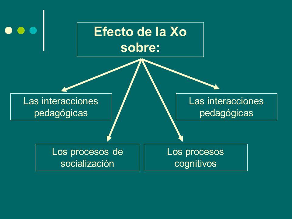Efecto de la Xo sobre: Las interacciones pedagógicas Los procesos de socialización Los procesos cognitivos Las interacciones pedagógicas