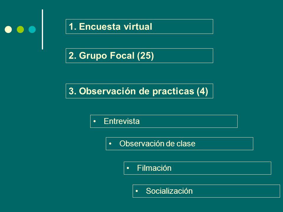 1. Encuesta virtual 2. Grupo Focal (25) 3. Observación de practicas (4) Entrevista Observación de clase Filmación Socialización