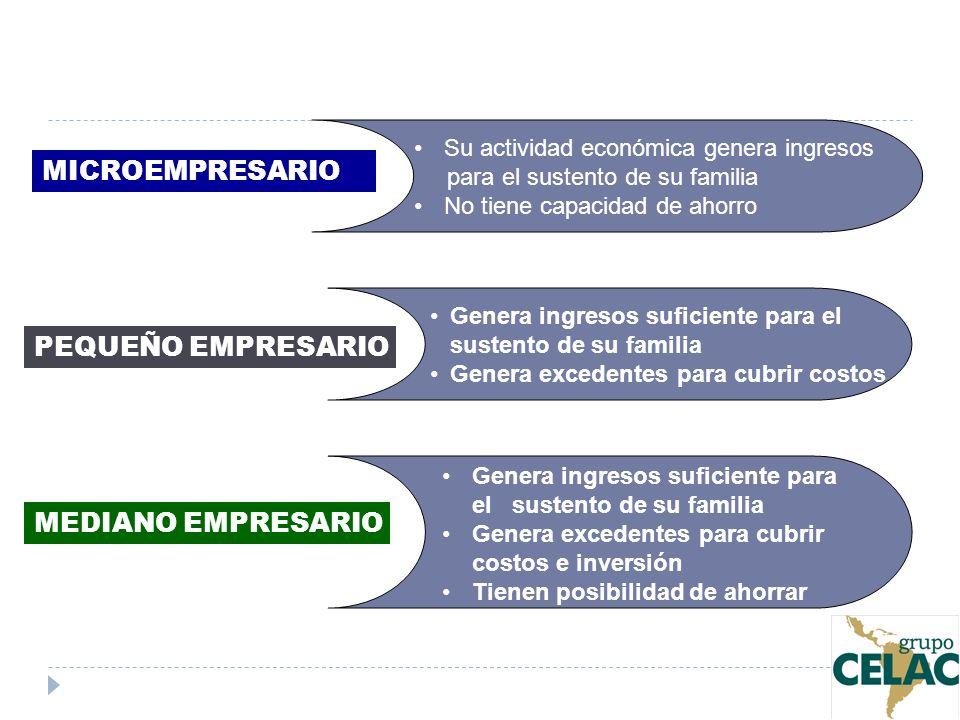 PIRÁMIDE EMPRESARIAL Grande empresa Mediana empresa Pequeña empresa Microempresa