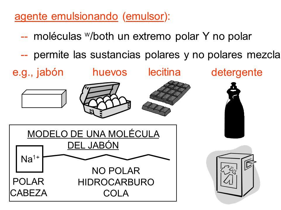 agente emulsionando (emulsor): moléculas w /both un extremo polar Y no polar -- permite las sustancias polares y no polares mezclarse e.g., jabón lecitina huevos MODELO DE UNA MOLÉCULA DEL JABÓN NO POLAR HIDROCARBURO COLA POLAR CABEZA Na 1+ detergente