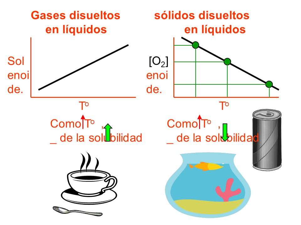 Gases disueltos sólidos disueltos en líquidos en líquidos ToTo Sol enoi de.