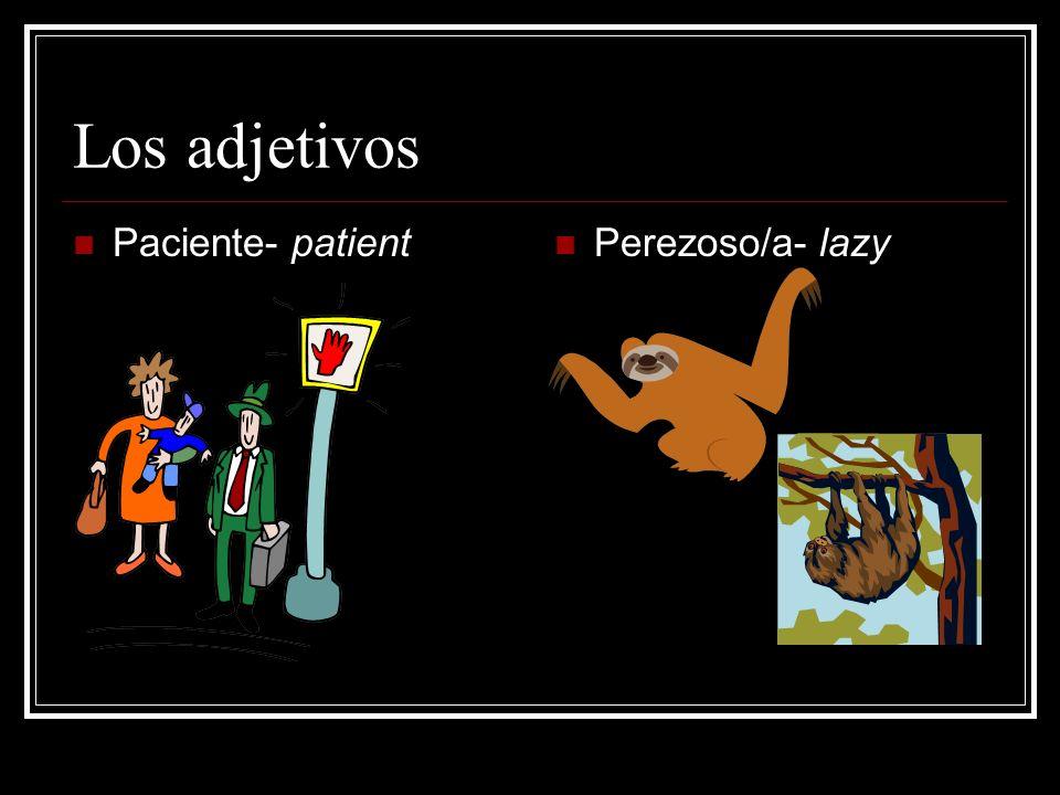 Los adjetivos Paciente- patient Perezoso/a- lazy