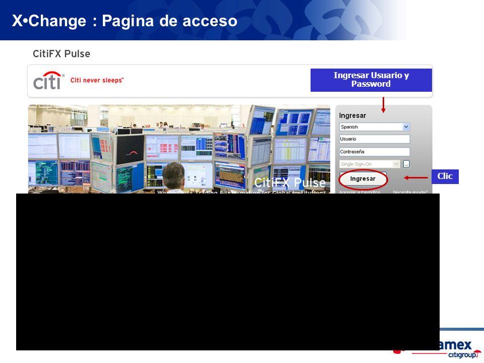 Ingresar Usuario y Password Clic XChange : Pagina de acceso