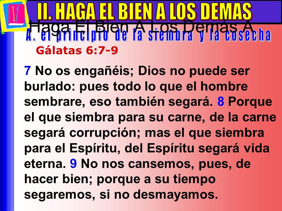 7 No os engañéis; Dios no puede ser burlado: pues todo lo que el hombre sembrare, eso también segará. 8 Porque el que siembra para su carne, de la car