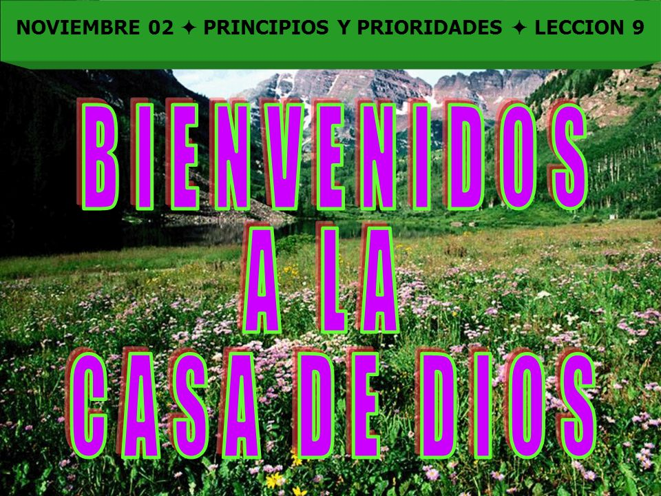 Bienvenida NOVIEMBRE 02 PRINCIPIOS Y PRIORIDADES LECCION 9