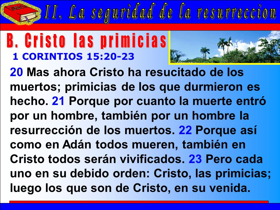 La Seguridad De La Resurrección B 20 Mas ahora Cristo ha resucitado de los muertos; primicias de los que durmieron es hecho. 21 Porque por cuanto la m