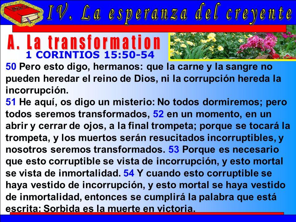 La Esperanza Del Creyente A 50 Pero esto digo, hermanos: que la carne y la sangre no pueden heredar el reino de Dios, ni la corrupción hereda la incorrupción.