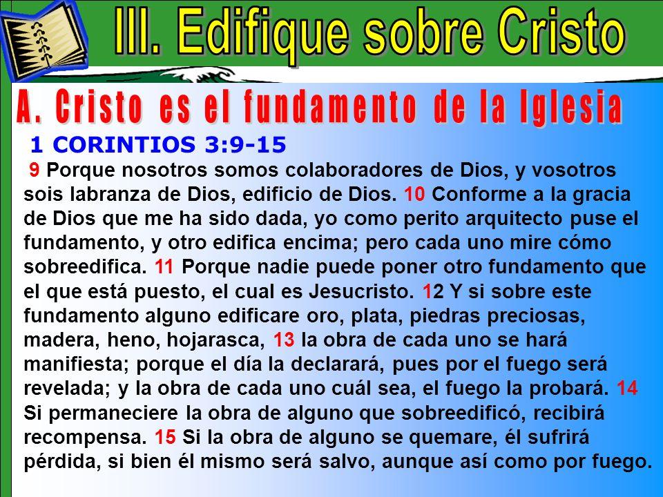 Edifique Sobre Cristo A 9 Porque nosotros somos colaboradores de Dios, y vosotros sois labranza de Dios, edificio de Dios. 10 Conforme a la gracia de