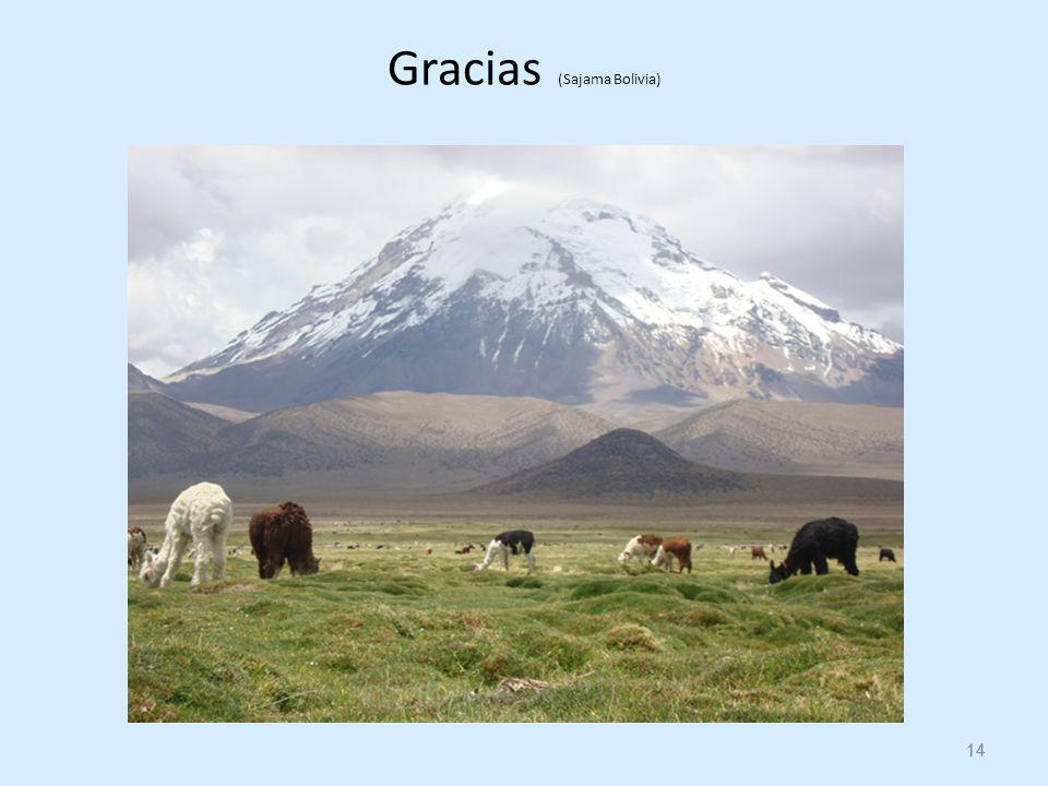 14 Gracias (Sajama Bolivia) 14