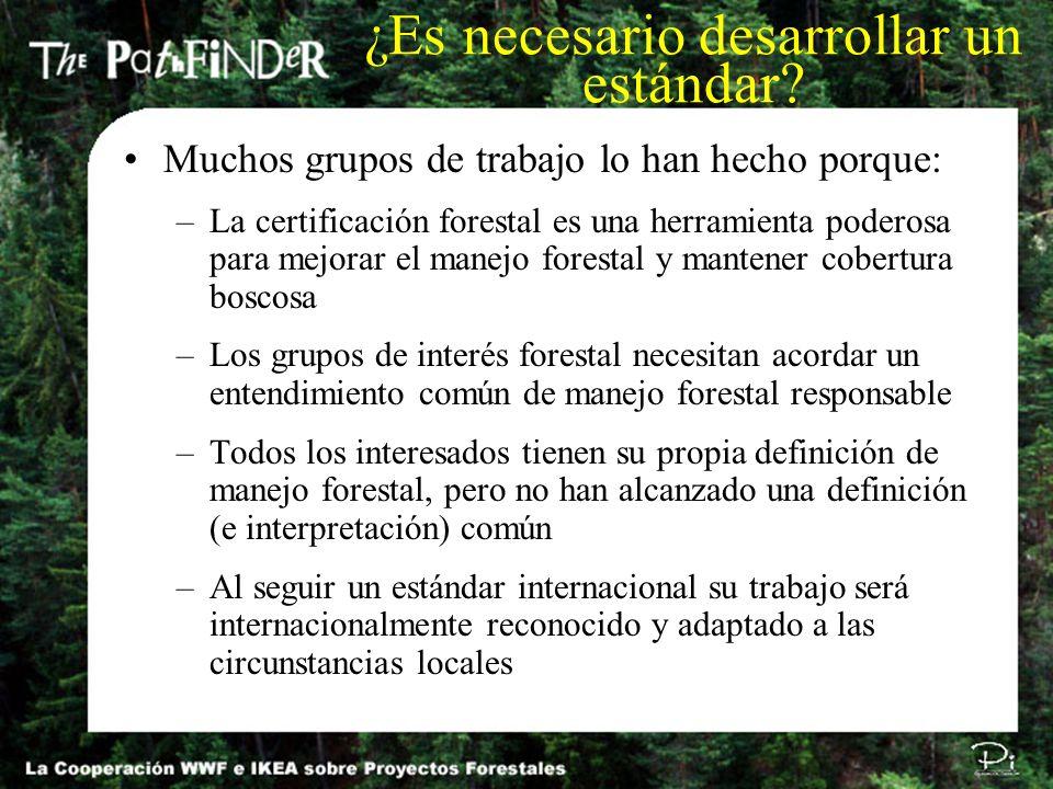 Muchos grupos de trabajo lo han hecho porque: –La certificación forestal es una herramienta poderosa para mejorar el manejo forestal y mantener cobert