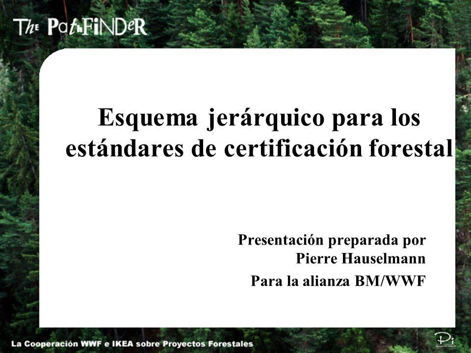 Pi Environmental Consulting π Esquema jerárquico para los estándares de certificación forestal Presentación preparada por Pierre Hauselmann Para la al