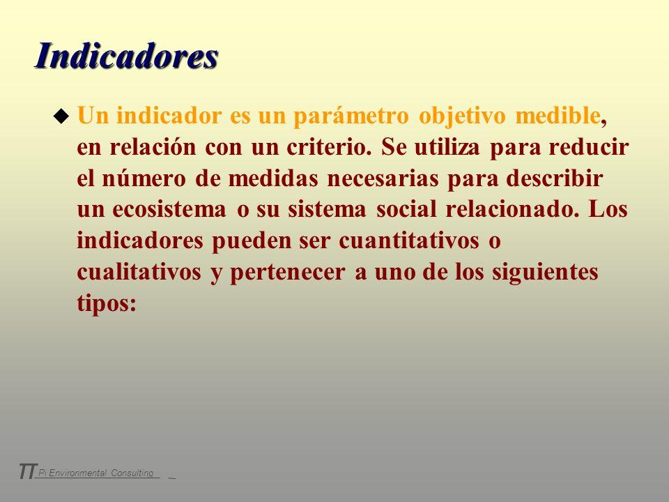 Pi Environmental Consulting π Indicadores u Un indicador es un parámetro objetivo medible, en relación con un criterio. Se utiliza para reducir el núm