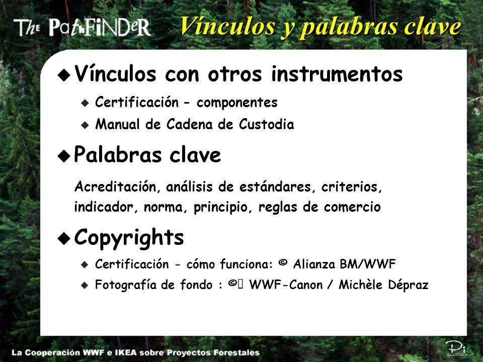 Pi Environmental Consulting π Vínculos y palabras clave u Vínculos con otros instrumentos u Certificación - componentes u Manual de Cadena de Custodia