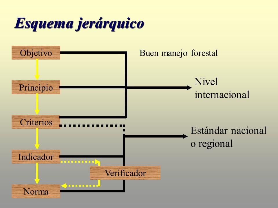 Objetivo Principio Criterios Indicador Norma Nivel internacional Verificador Estándar nacional o regional Buen manejo forestal Esquema jerárquico