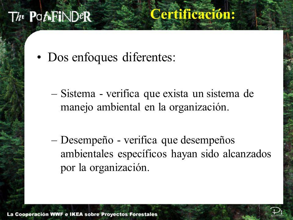 Dos enfoques diferentes: –Sistema - verifica que exista un sistema de manejo ambiental en la organización. –Desempeño - verifica que desempeños ambien