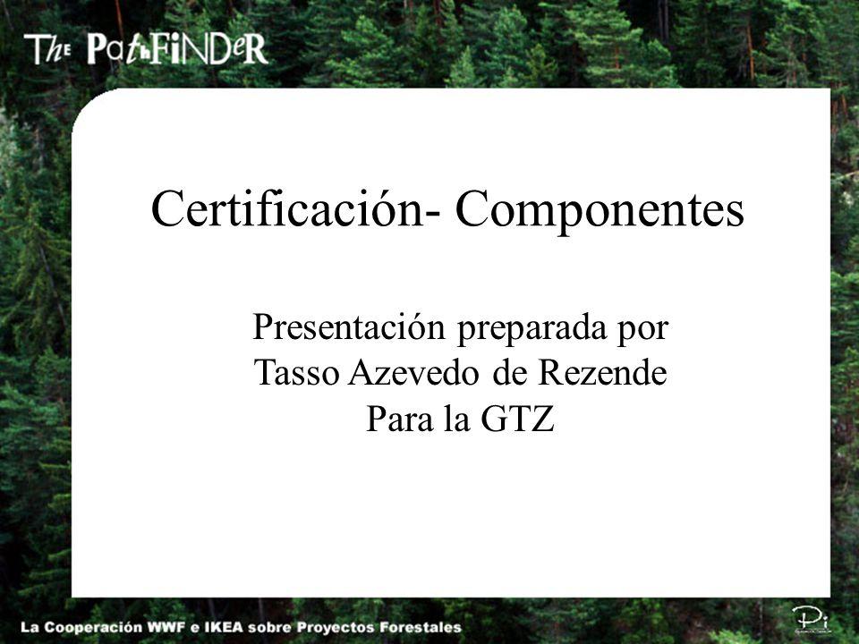 Autor: Tasso Azevedo / tasso@imaflora.org / P991117E Certificación- Componentes Presentación preparada por Tasso Azevedo de Rezende Para la GTZ