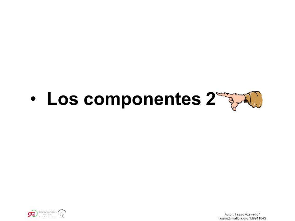 Autor: Tasso Azevedo / tasso@imaflora.org / M991104S Los componentes 2