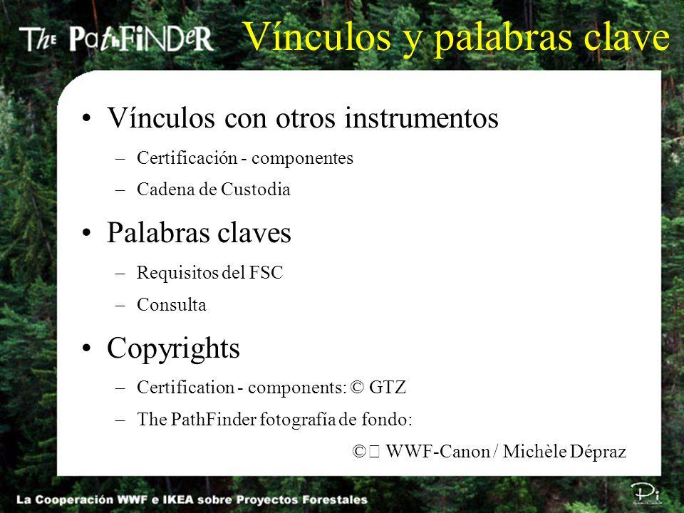 Autor: Tasso Azevedo / tasso@imaflora.org / P991117E Los componentes 1