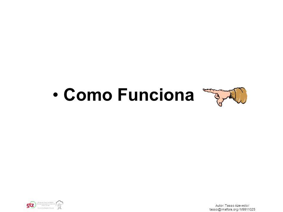 Autor: Tasso Azevedo / tasso@imaflora.org / M991102S Como Funciona