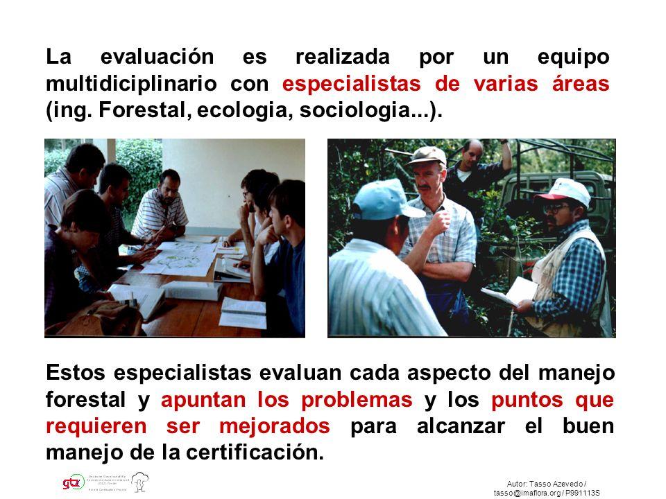Autor: Tasso Azevedo / tasso@imaflora.org / P991113S La evaluación es realizada por un equipo multidiciplinario con especialistas de varias áreas (ing.