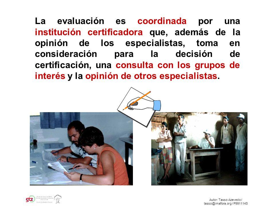 Autor: Tasso Azevedo / tasso@imaflora.org / P991114S La evaluación es coordinada por una institución certificadora que, además de la opinión de los especialistas, toma en consideración para la decisión de certificación, una consulta con los grupos de interés y la opinión de otros especialistas.